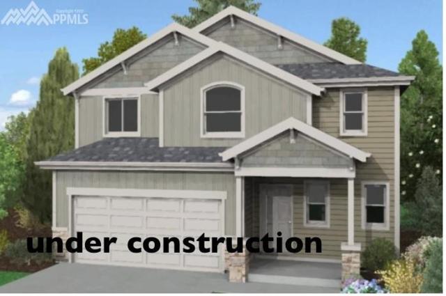 6402 Anders Ridge Lane, Colorado Springs, CO 80923 (#9312262) :: 8z Real Estate