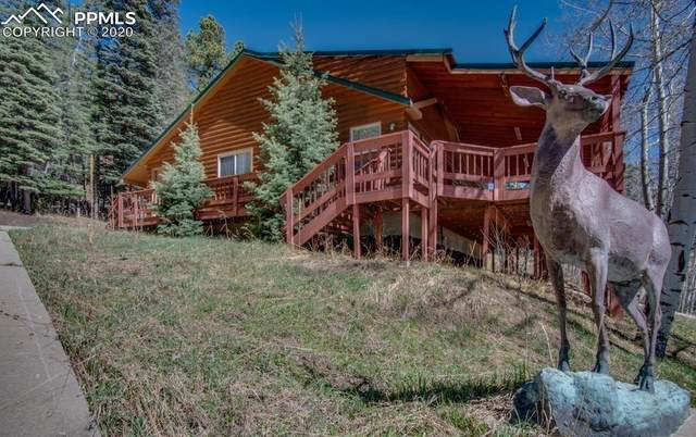 31 Angel Road, Rye, CO 81069 (#9317559) :: CC Signature Group