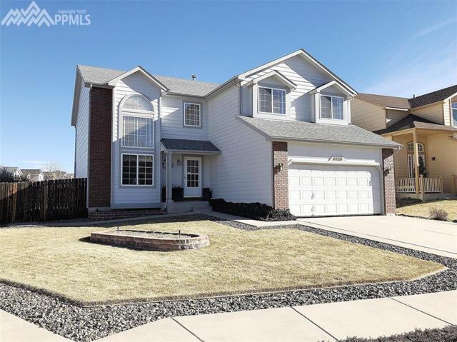 5133 Pine Haven Drive, Colorado Springs, CO 80923 (#9321275) :: 8z Real Estate