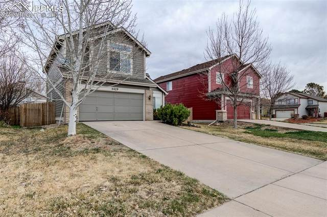 4429 Horizonpoint Drive, Colorado Springs, CO 80925 (#9323131) :: The Gold Medal Team with RE/MAX Properties, Inc