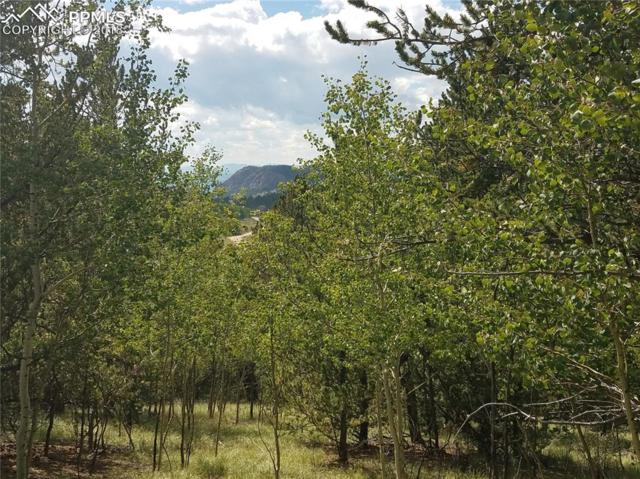 190 Fairview Drive, Cripple Creek, CO 80813 (#9323355) :: The Peak Properties Group