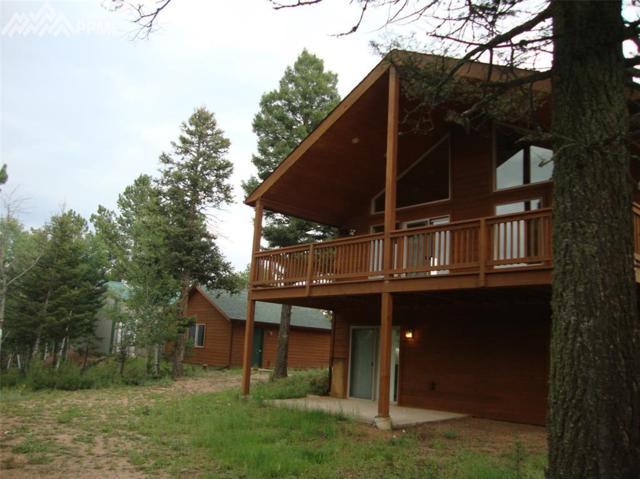 55 Elk Creek Road, Divide, CO 80814 (#9323882) :: Perfect Properties powered by HomeTrackR
