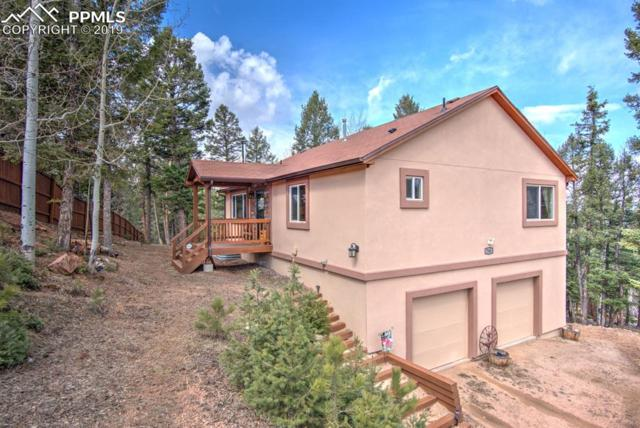 746 Trout Haven Road, Florissant, CO 80816 (#9325714) :: The Dixon Group