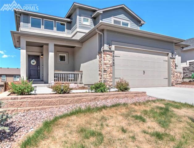 2628 Equine Court, Colorado Springs, CO 80922 (#9329829) :: 8z Real Estate
