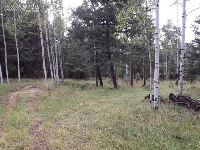 Blue Spruce Trail, Woodland Park, CO 80863 (#9330599) :: 8z Real Estate