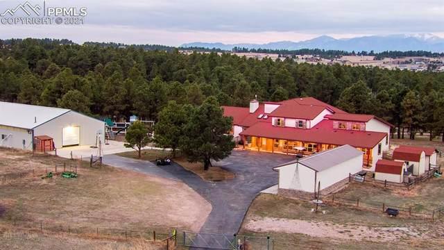 17420 Walden Way, Colorado Springs, CO 80908 (#9341571) :: The Dixon Group