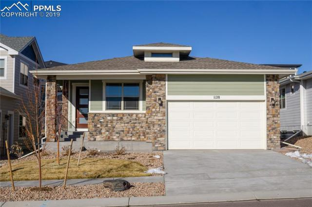 1128 Seabiscuit Drive, Colorado Springs, CO 80921 (#9342164) :: The Daniels Team