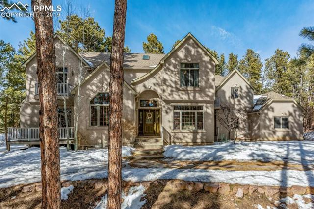 20 E Stirrup Trail, Monument, CO 80132 (#9348060) :: Harling Real Estate