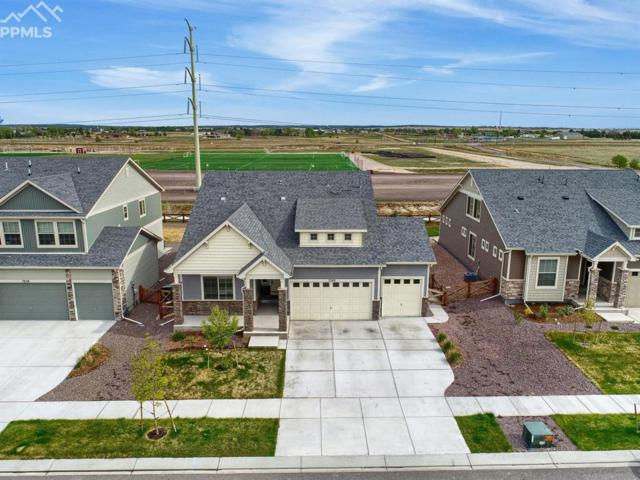 7246 Horizon Wood Lane, Colorado Springs, CO 80927 (#9350017) :: The Peak Properties Group