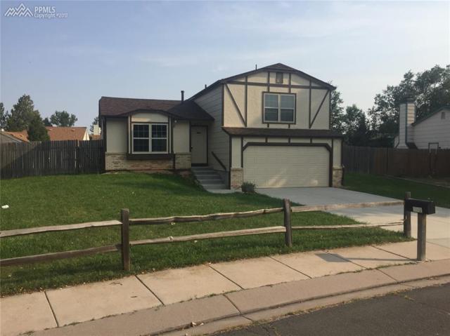 667 Trailcrest Court, Colorado Springs, CO 80906 (#9350976) :: 8z Real Estate