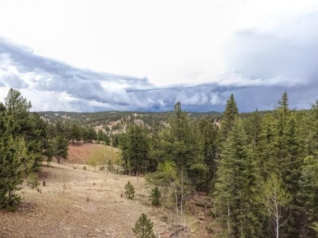212 Brittany Drive, Florissant, CO 80816 (#9351690) :: 8z Real Estate