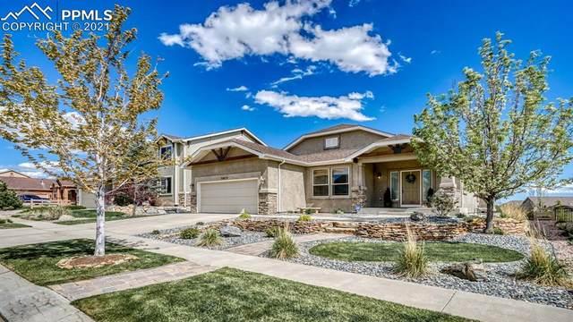 5973 Revelstoke Drive, Colorado Springs, CO 80924 (#9353500) :: Tommy Daly Home Team