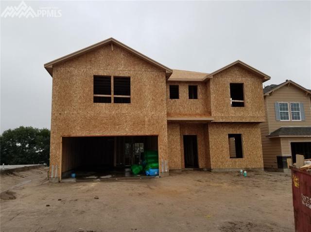 8067 Glory Drive, Colorado Springs, CO 80924 (#9359657) :: 8z Real Estate