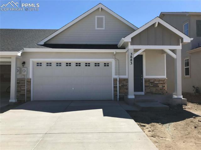 5883 Morning Light Terrace, Colorado Springs, CO 80919 (#9362434) :: The Treasure Davis Team