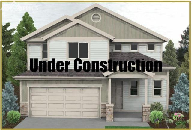 6432 Anders Ridge Lane, Colorado Springs, CO 80923 (#9363044) :: 8z Real Estate