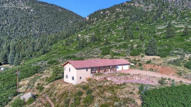 4330 Green Mountain Drive, Colorado Springs, CO 80921 (#9366988) :: 8z Real Estate