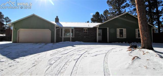 587 Sunnywood Lane, Woodland Park, CO 80863 (#9368471) :: The Peak Properties Group
