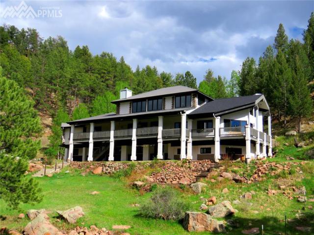 253 Bernard Creek Trail, Florissant, CO 80816 (#9370502) :: 8z Real Estate