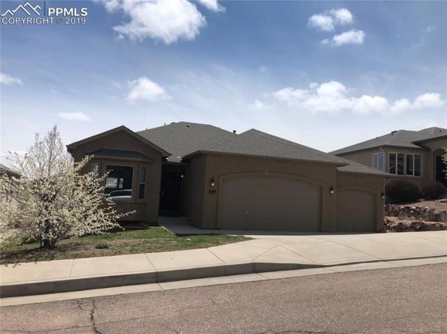 327 Pyrite Terrace, Colorado Springs, CO 80905 (#9372693) :: Venterra Real Estate LLC