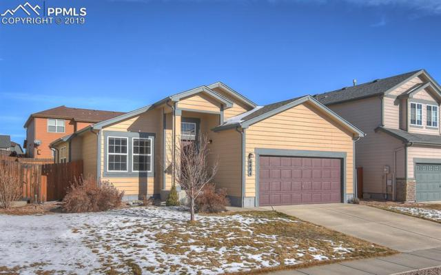 6884 Sierra Meadows Drive, Colorado Springs, CO 80908 (#9373780) :: The Daniels Team