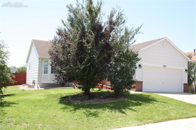 7663 Marshall Drive, Fountain, CO 80817 (#9374900) :: 8z Real Estate