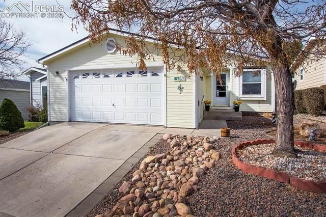 4024 Gray Fox Heights, Colorado Springs, CO 80922 (#9374977) :: Finch & Gable Real Estate Co.