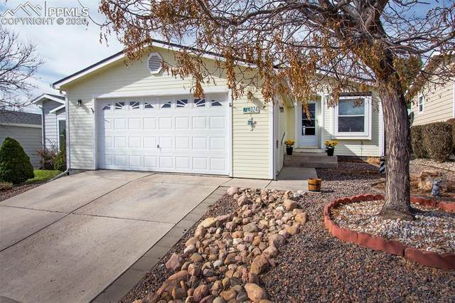 4024 Gray Fox Heights, Colorado Springs, CO 80922 (#9374977) :: The Daniels Team