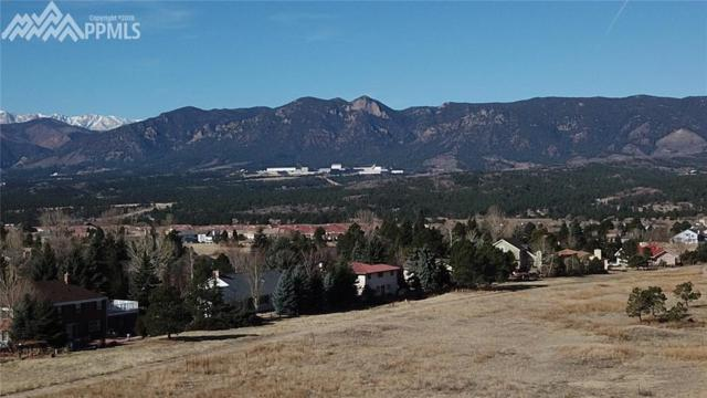 14330 Spyglass Hill Place, Colorado Springs, CO 80921 (#9375973) :: Fisk Team, RE/MAX Properties, Inc.