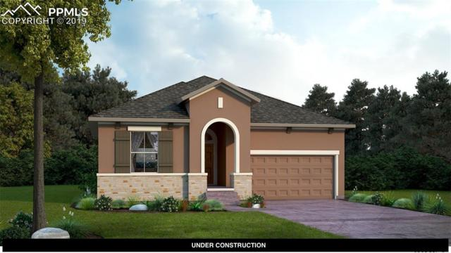 10052 Prima Run Place, Colorado Springs, CO 80924 (#9376988) :: Perfect Properties powered by HomeTrackR