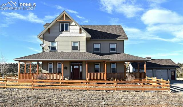 12906 County Road 162 Road, Nathrop, CO 81236 (#9378239) :: Action Team Realty