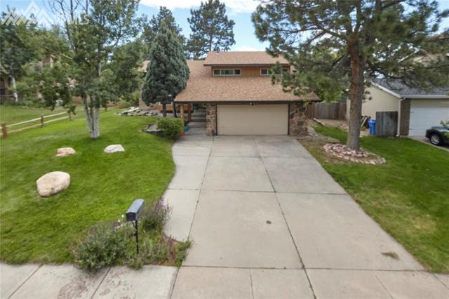 3072 Avondale Drive, Colorado Springs, CO 80917 (#9381828) :: Action Team Realty
