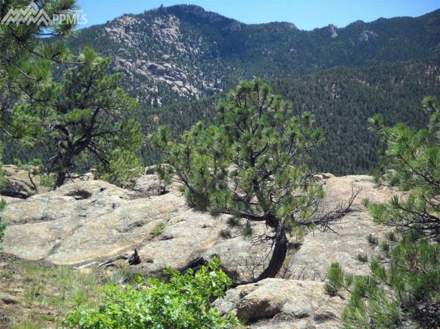 5350 Felicity View, Colorado Springs, CO 80906 (#9383597) :: 8z Real Estate