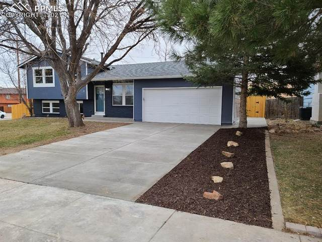 2 Kingsboro Way, Pueblo, CO 81005 (#9388338) :: The Gold Medal Team with RE/MAX Properties, Inc