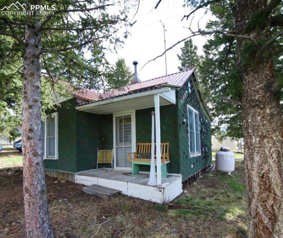 114 Hettig Avenue, Cripple Creek, CO 80813 (#9392672) :: The Peak Properties Group