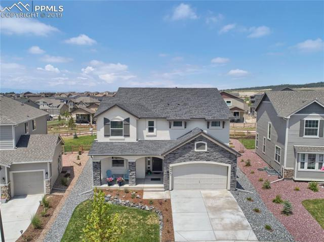 9644 Surrey Run Drive, Colorado Springs, CO 80924 (#9395448) :: CC Signature Group