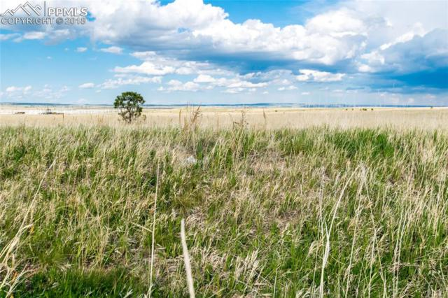 13645 Irish Hunter Trail, Elbert, CO 80106 (#9401294) :: Action Team Realty