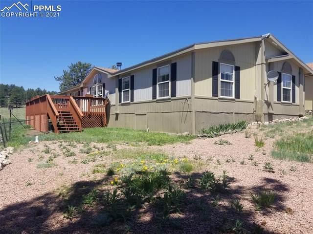 125 Valley Lane, Guffey, CO 80820 (#9402757) :: Compass Colorado Realty