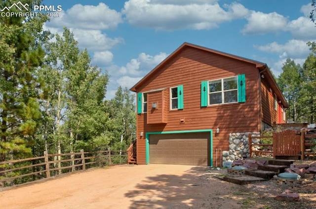 144 Iowa Lane, Woodland Park, CO 80863 (#9405963) :: Tommy Daly Home Team