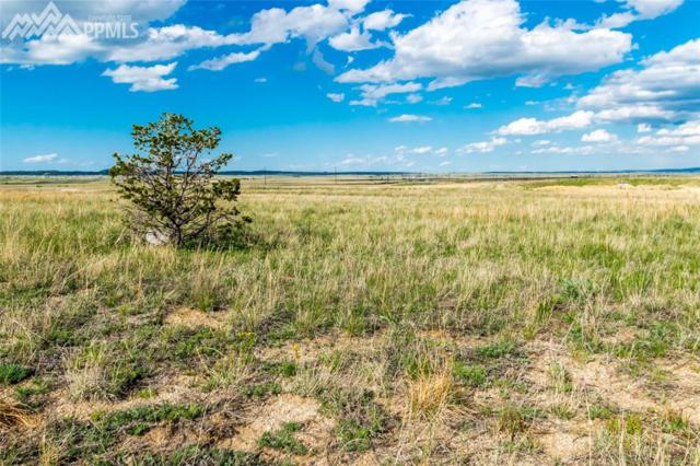 12075 Silver Concho Trail, Elbert, CO 80106 (#9409516) :: Jason Daniels & Associates at RE/MAX Millennium