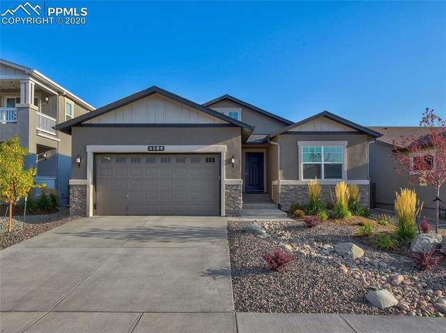 4586 Hanging Lake Circle, Colorado Springs, CO 80924 (#9409631) :: The Daniels Team