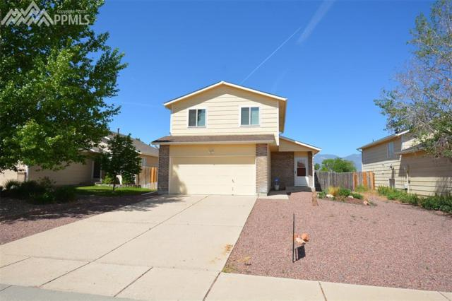 4490 Witches Hollow Lane, Colorado Springs, CO 80911 (#9415578) :: 8z Real Estate