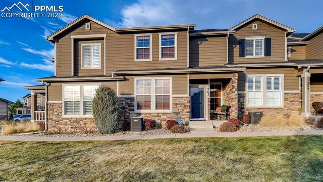 1263 Walters Point, Monument, CO 80132 (#9417780) :: CC Signature Group