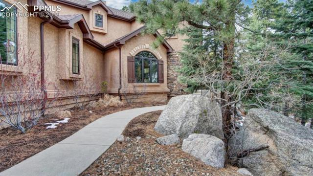 6020 Buttermere Drive, Colorado Springs, CO 80906 (#9427784) :: Tommy Daly Home Team