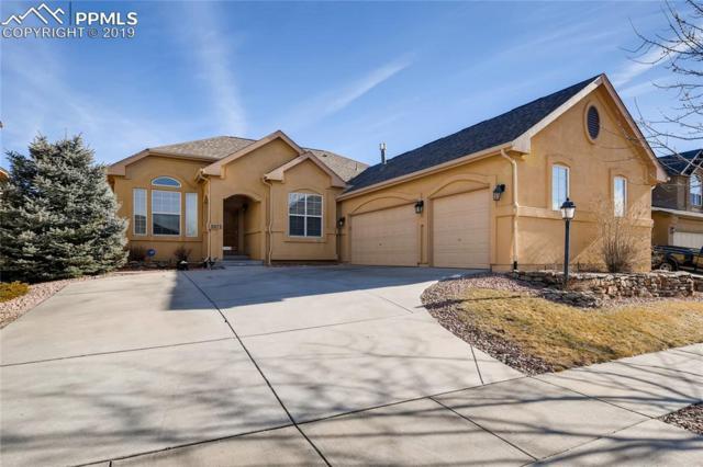5973 Wild Bill Way, Colorado Springs, CO 80923 (#9430103) :: 8z Real Estate