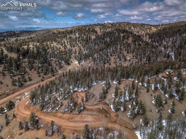 95 Fairview Drive, Cripple Creek, CO 80813 (#9430888) :: Action Team Realty