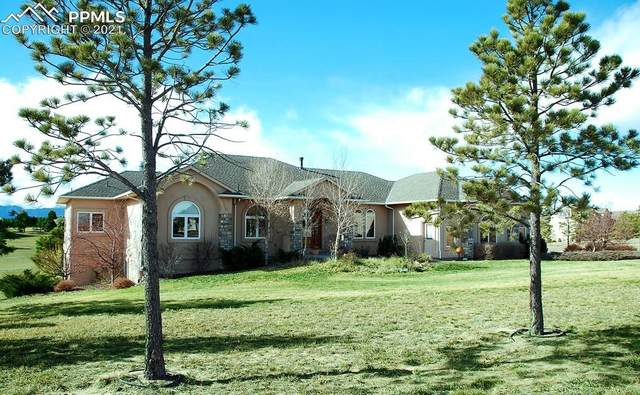 19512 Kershaw Court, Monument, CO 80132 (#9431588) :: The Harling Team @ HomeSmart