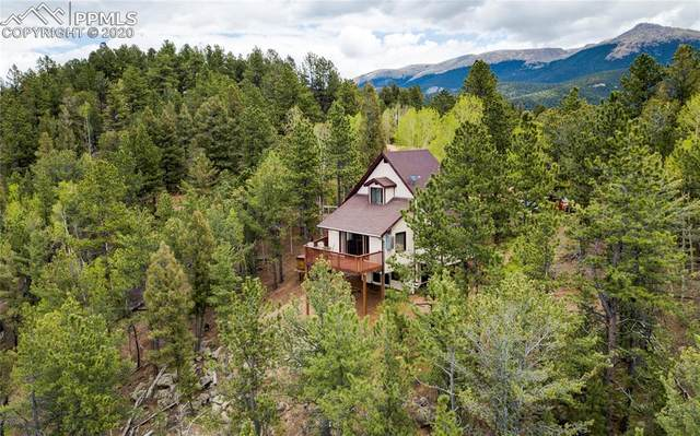 337 Blue Spruce Road, Divide, CO 80814 (#9433055) :: Tommy Daly Home Team