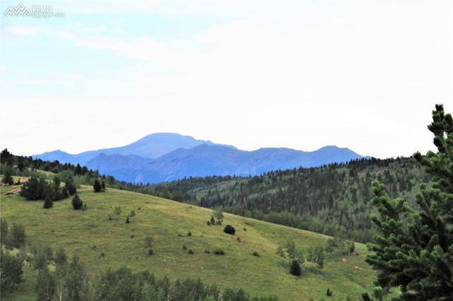 0000 County 86 Road, Victor, CO 80860 (#9435454) :: 8z Real Estate