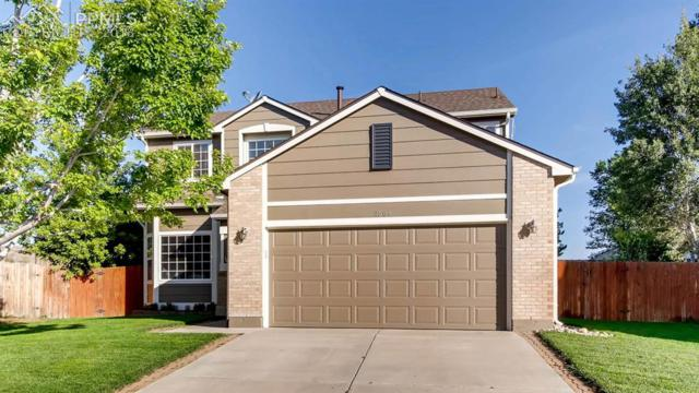 2564 Weyburn Way, Colorado Springs, CO 80922 (#9436498) :: The Treasure Davis Team