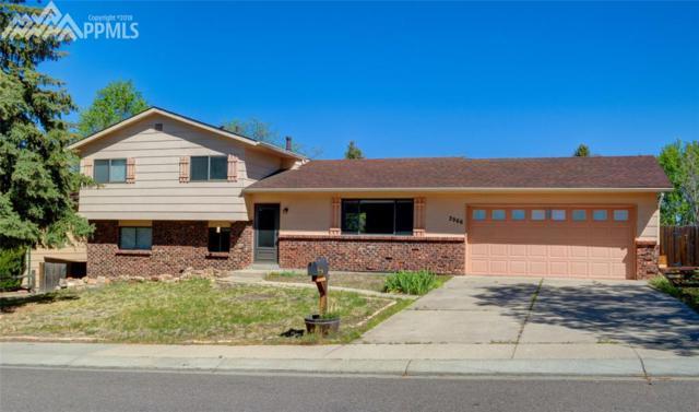 2966 Buttermilk Circle, Colorado Springs, CO 80918 (#9437196) :: The Peak Properties Group
